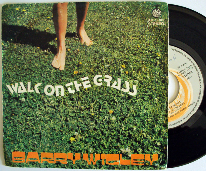 Barry Wigley walk on the grass / brother jack