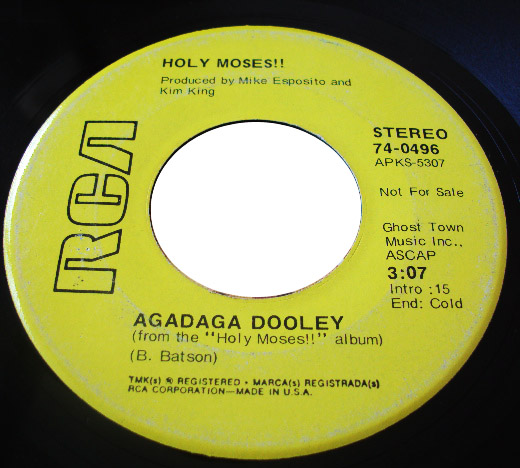 Holy Moses agadaga dooley / a cowboy's dream