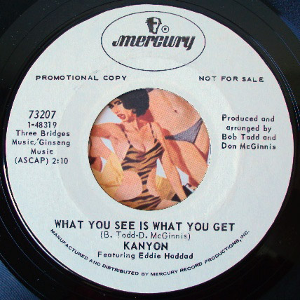 Kanyon & Eddie Haddad what you see is what you get / hot runnin soul