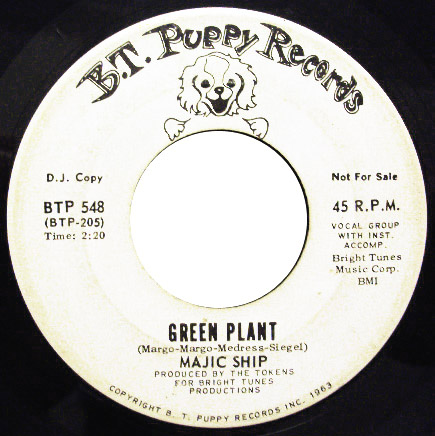 Majic Ship green plant / night time music