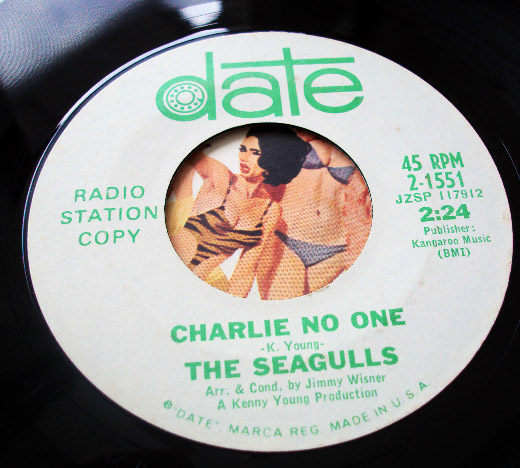 Seagulls, the twiggs / charlie no one