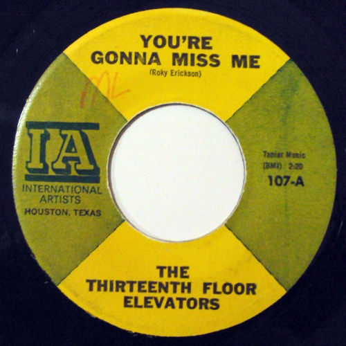Thirteenth Floor Elevators, the you're gonna miss me / tried to hide